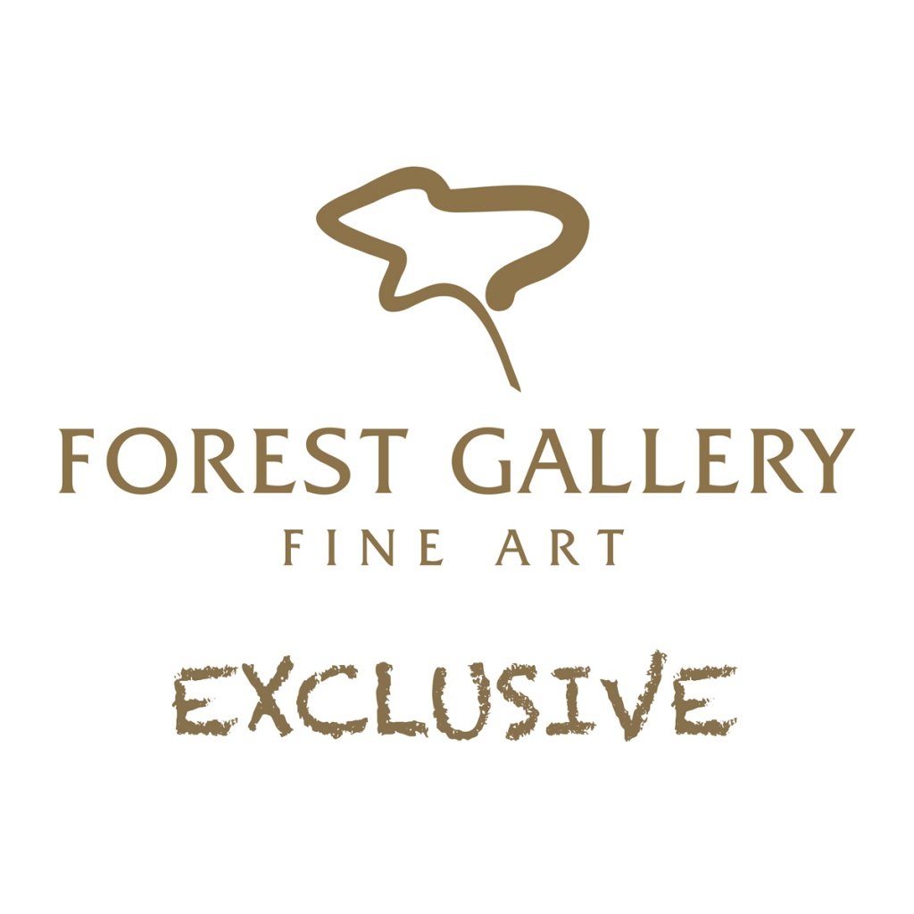 Forest Gallery Petworth West Sussex exclusive Tim Bulmer map of Petworth