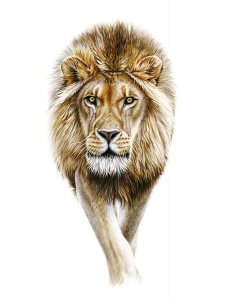 Richard Symonds wildlife artist originals