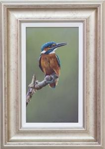 Wayne Westwood Kingfisher Painting