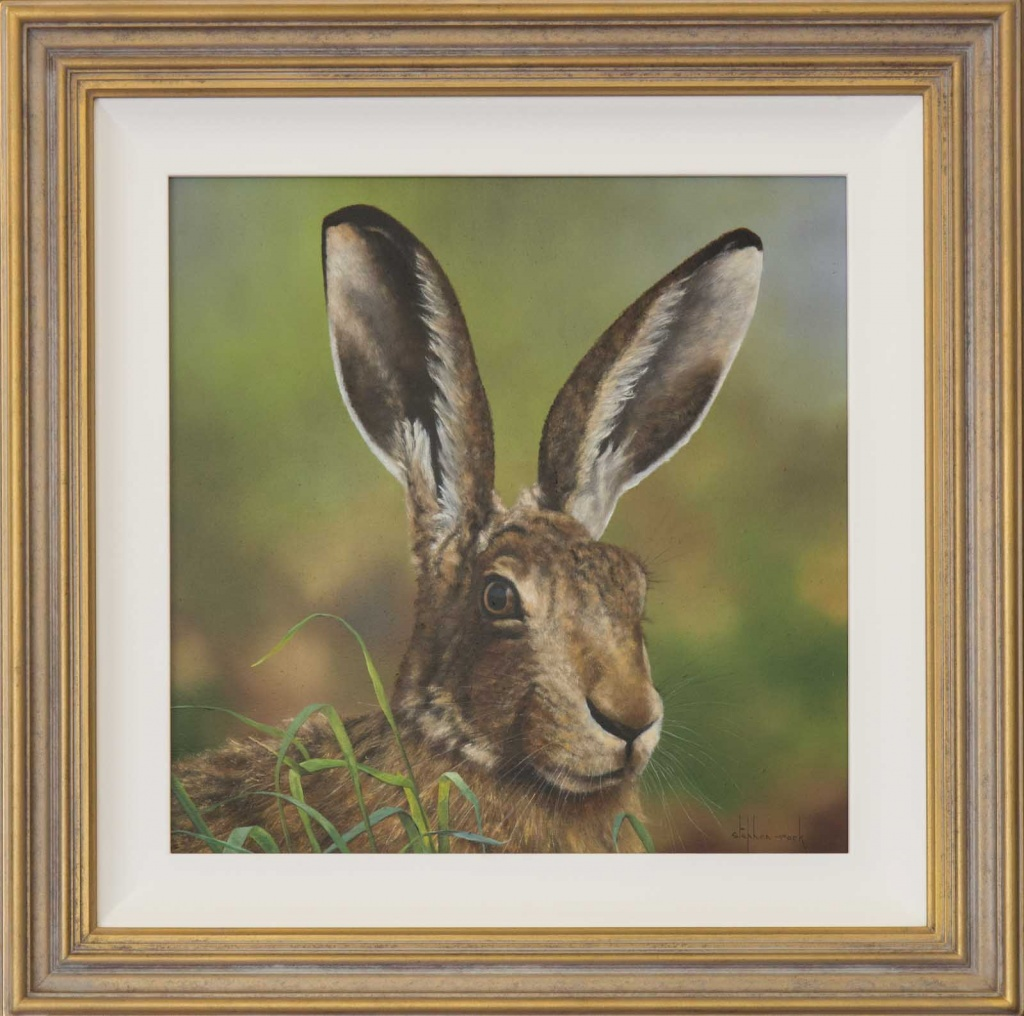 Stephen Park Oil Painting of a Hare
