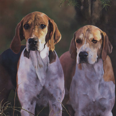 Stephen Parks - The Hounds
