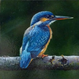 Lion Feijen The Kingfisher Animal Paintings