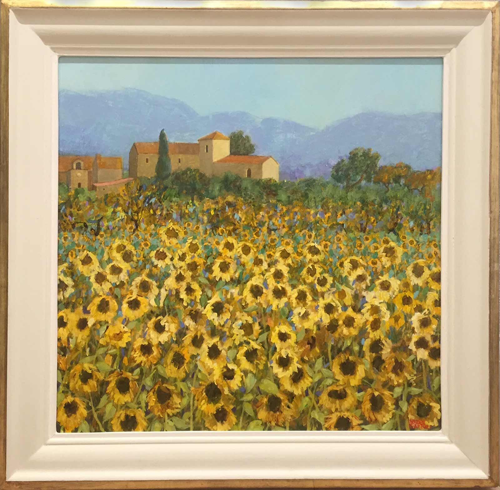September Sunflowers, Provence, Hazel Barker