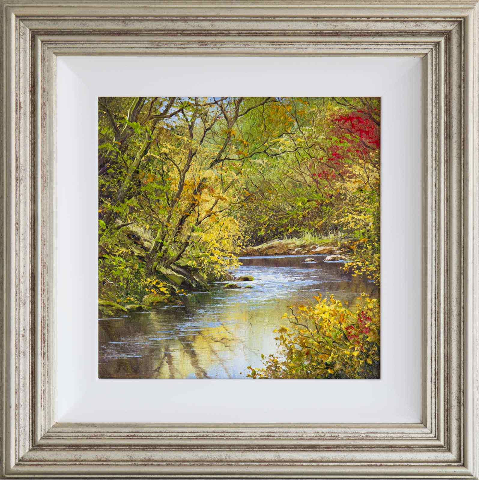Autumnal Brook, Terry Evans
