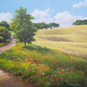 Countryside Walk,