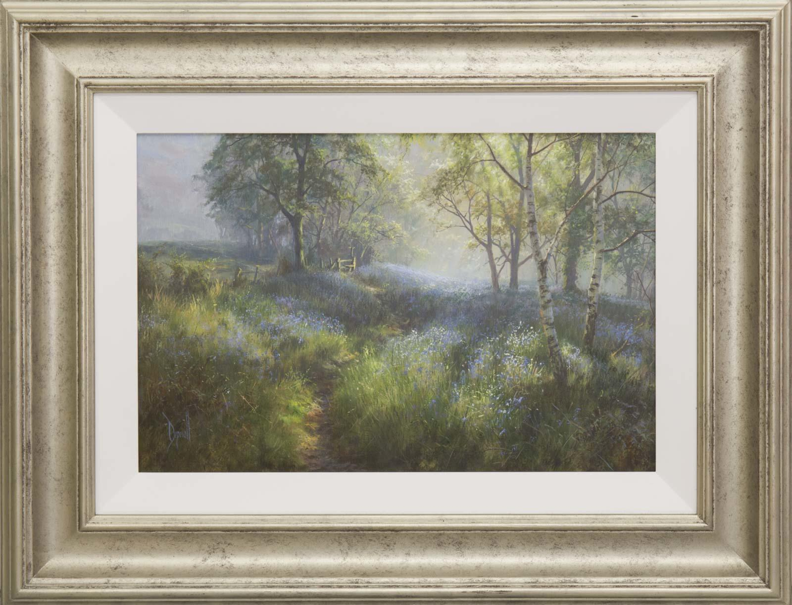 Bluebells in the Mist, David Dipnall