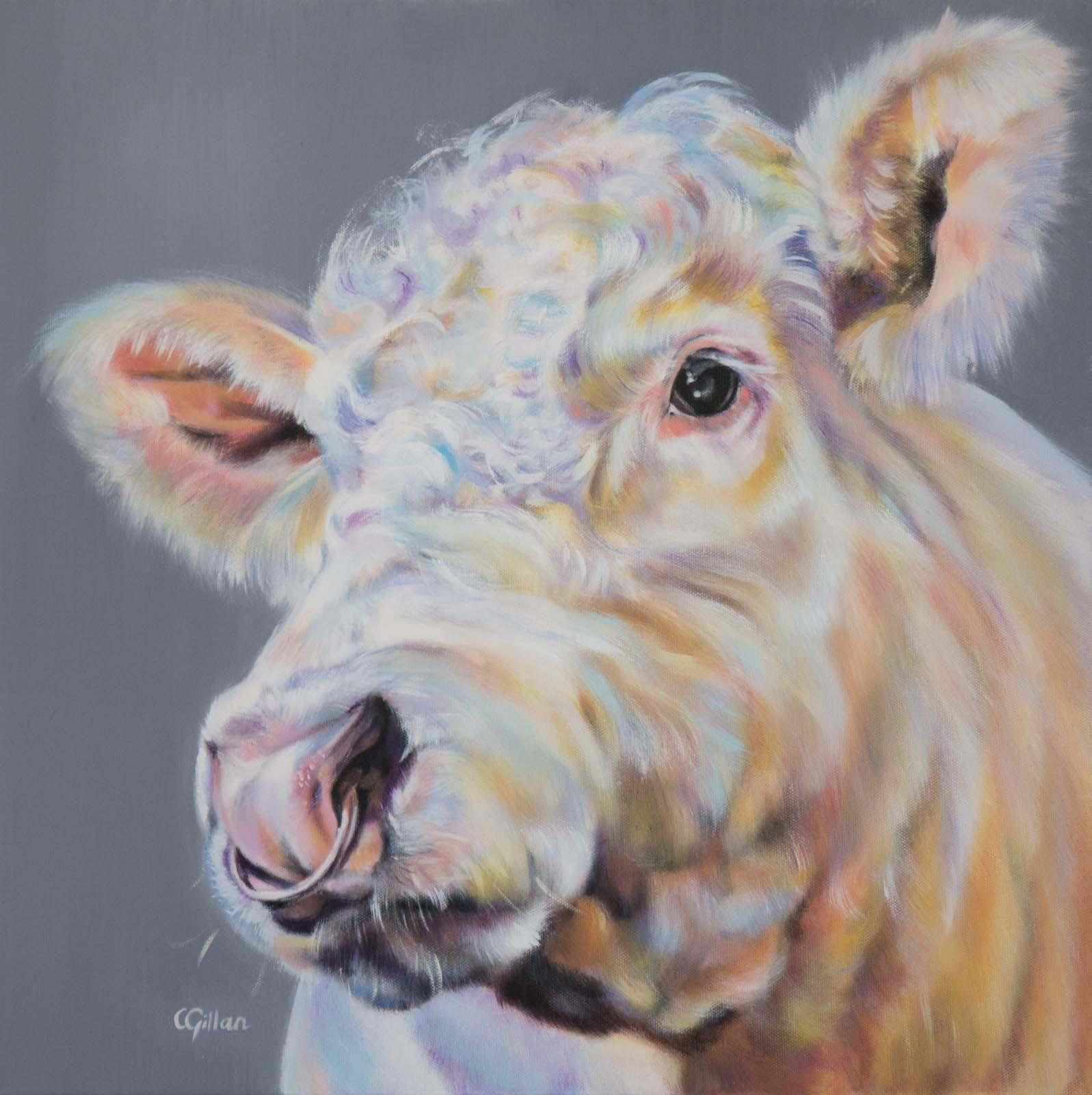 Inquisitive, Carol Gillan