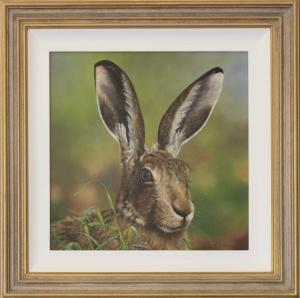 Alert Hare,