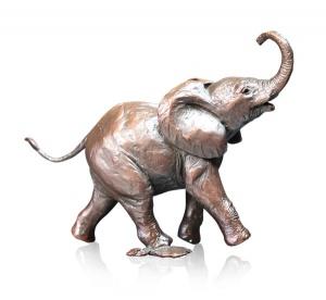 Baby Elephant Running,