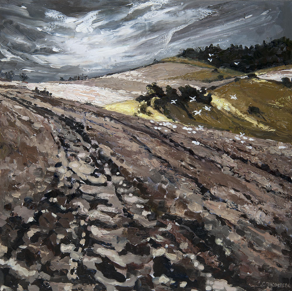 Ploughed Fields in Winter, Rackham Banks Amberley