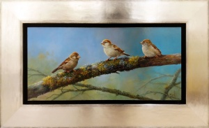 Young Sparrows,