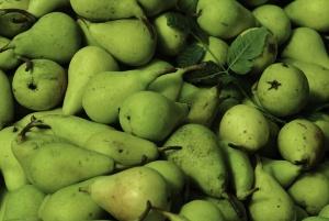 Pears,