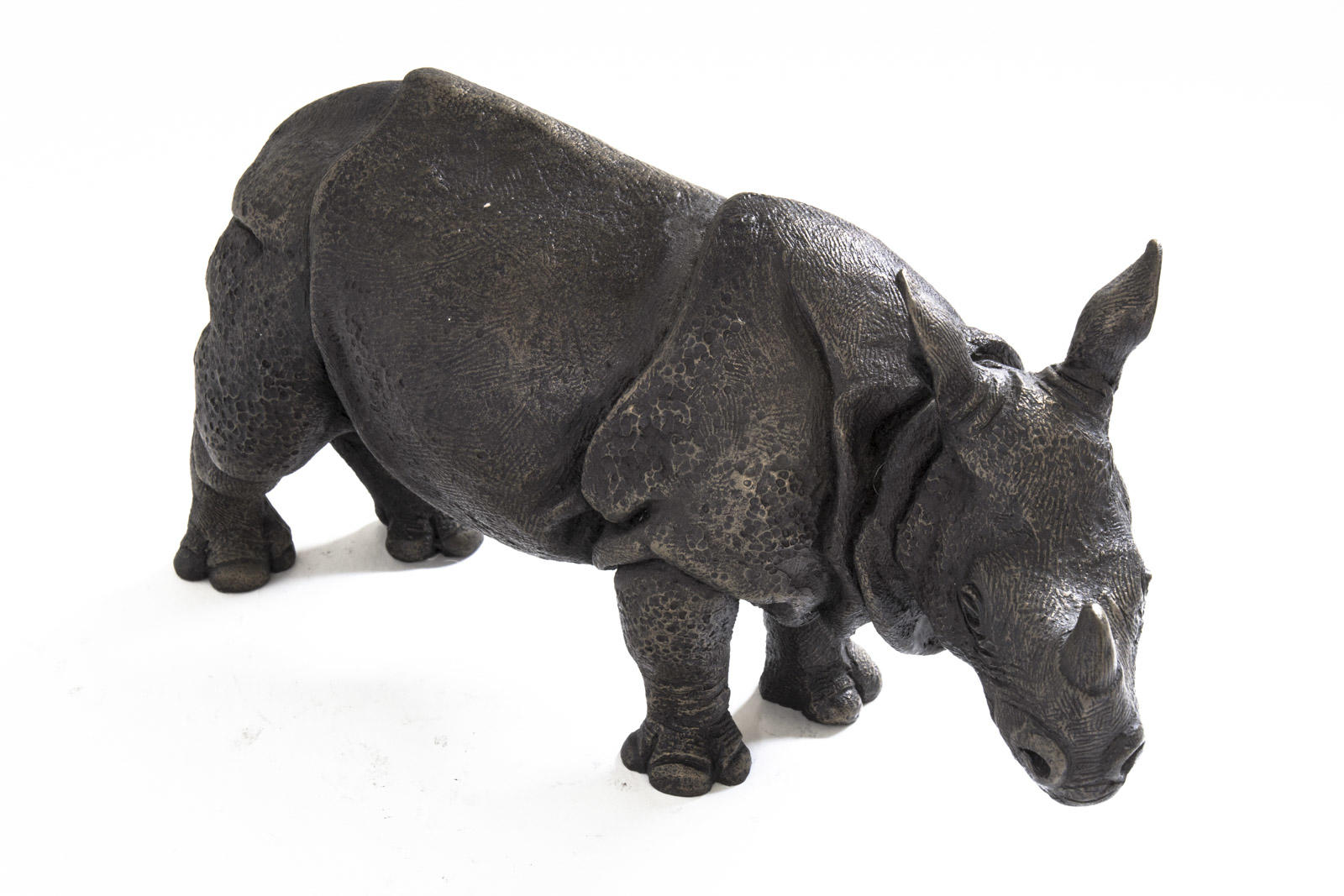 Asian Rhino Mother, Suzie Marsh