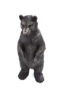 Henry Standing Bear Cub,