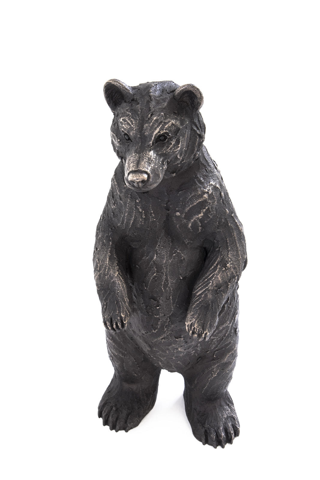 Henry Standing Bear Cub