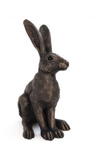 Small Alert Hare,