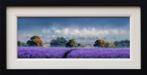 A Walk Through the Lavender,