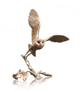 Small Barn Owl,