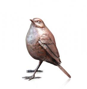 Robin Standing II,