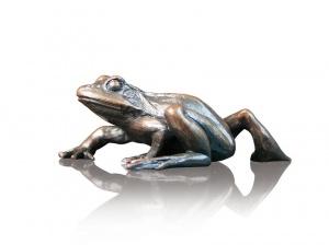 Small Frog Walking,