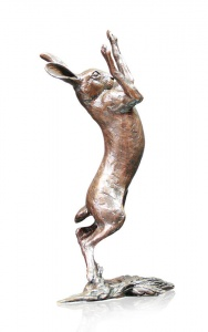 Medium Hare Boxing,