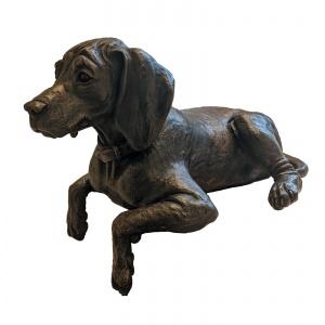 Cooper Vizsla Puppy,