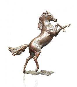 Freedom, Rearing Horse,