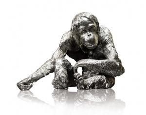 Orangutan,