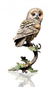 Tawny Owl with Acorns,