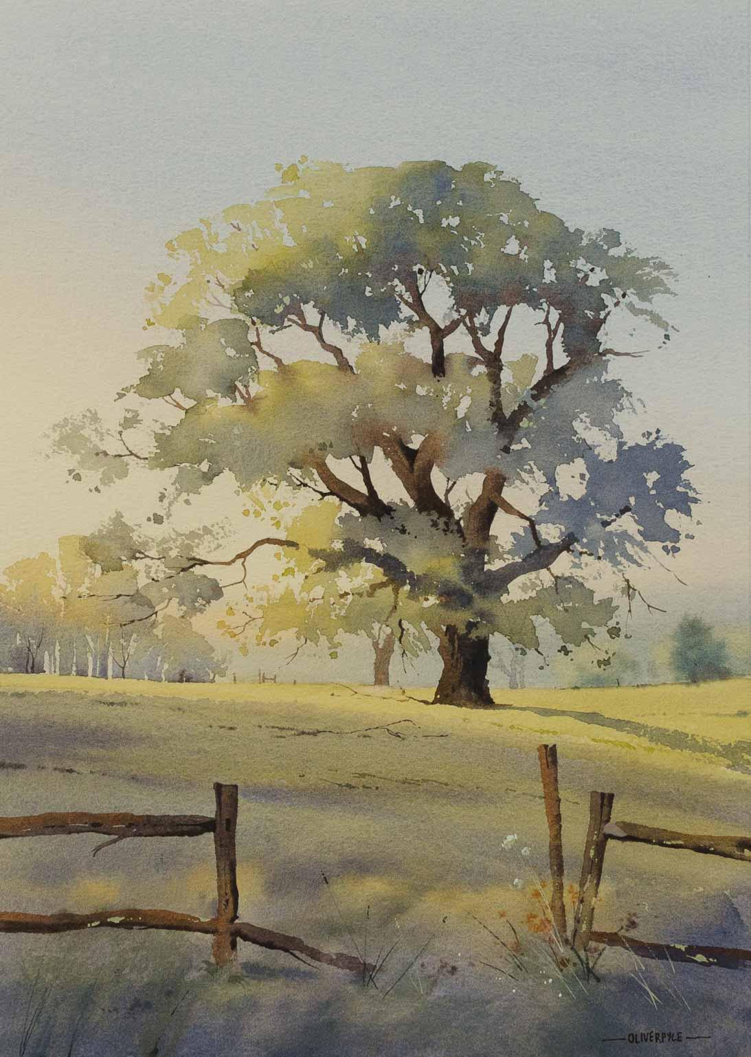 Sussex Oak, Oliver Pyle