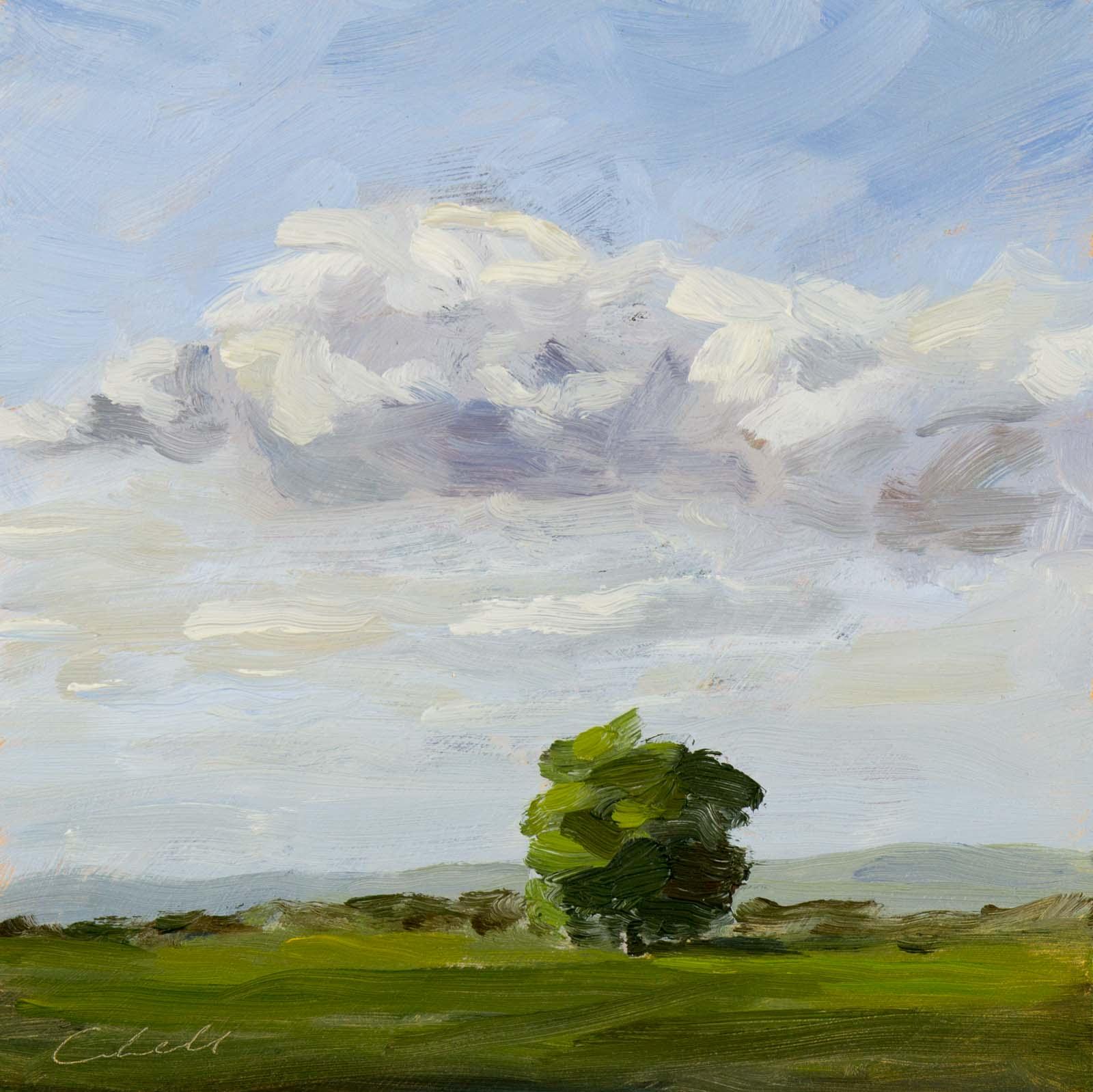 Sussex Oak, Matthew Cordwell