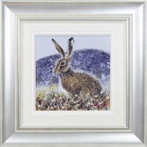 Hare,