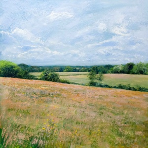 Summer on the South Downs,