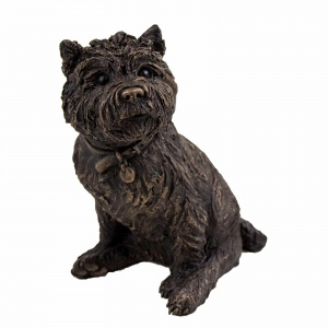 Poppy, Sitting Cairn Terrier,