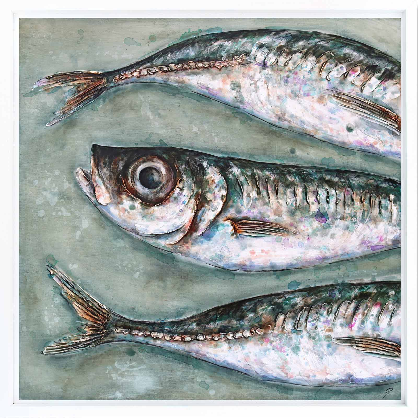 Three Large Mackerel Scad
