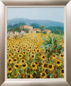 September Sunflowers Tuscany,