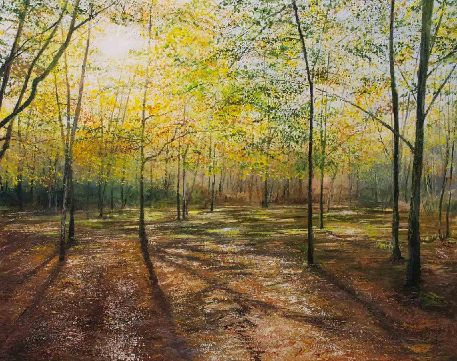 Autumn Light Pools, Grace Ellen