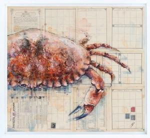 Native Shore Crab,