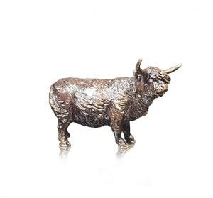 Highland Cow,
