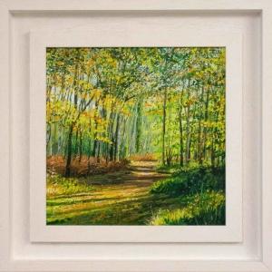 Autumn's Canopy,