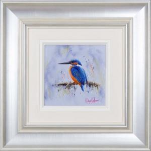 Kingfisher Stare,