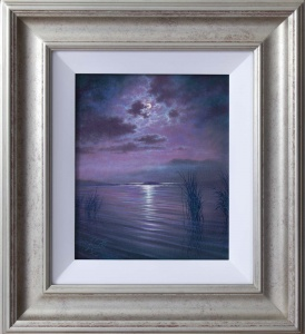 Moonlight Reflections,