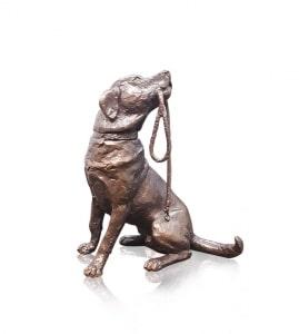 Medium Labrador with Lead,