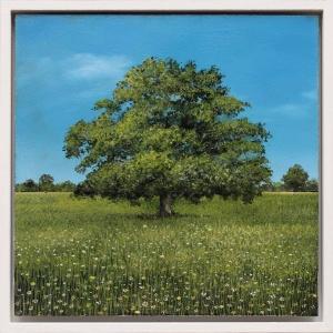 Ancient Oak Summer Study,