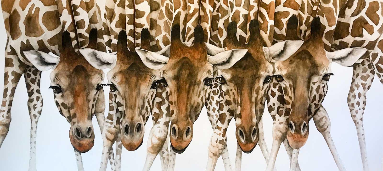 Drinking Problem, Giraffes, Dominique Salm