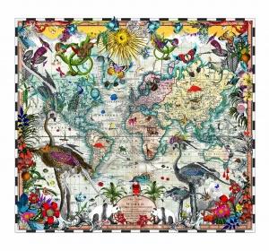 Navigators Tracks & Discoveries,
