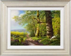 Country Lane to Lower Shuckborough,