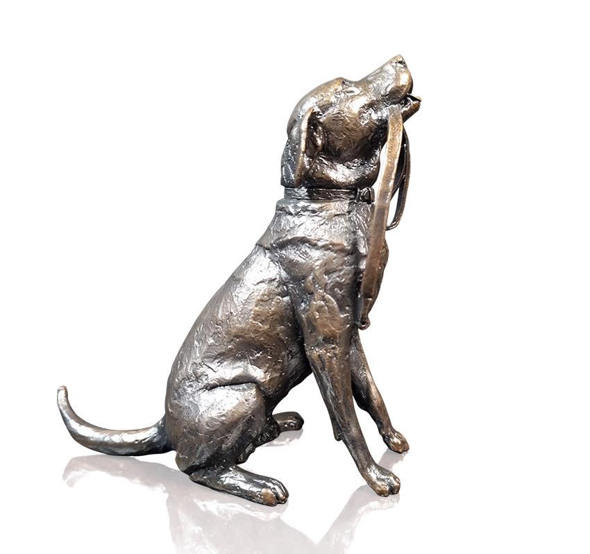 Labrador with Lead