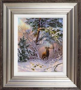Red Deer at Mantles Heath, Northamptonshire,